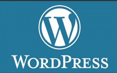 Custom Website Designing in WordPress